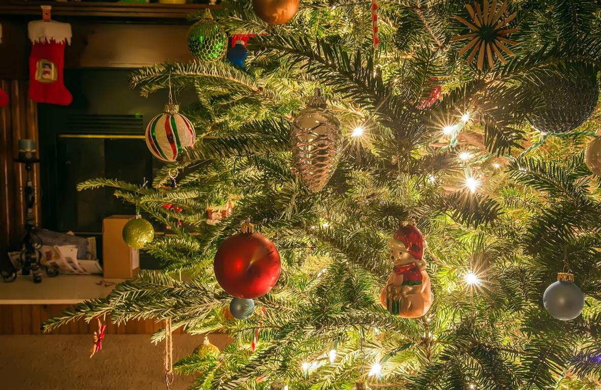 5 Safety Tips For A Safe And Happy Holiday